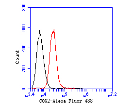 Flow cytometric analysis of COX2 was done on A549 cells. The cells were fixed, permeabilized and stained with the primary antibody (EM1902-12, 1/50) (red). After incubation of the primary antibody at room temperature for an hour, the cells were stained with a Alexa Fluor 488-conjugated Goat anti-Mouse IgG Secondary antibody at 1/1000 dilution for 30 minutes.Unlabelled sample was used as a control (cells without incubation with primary antibody; black).