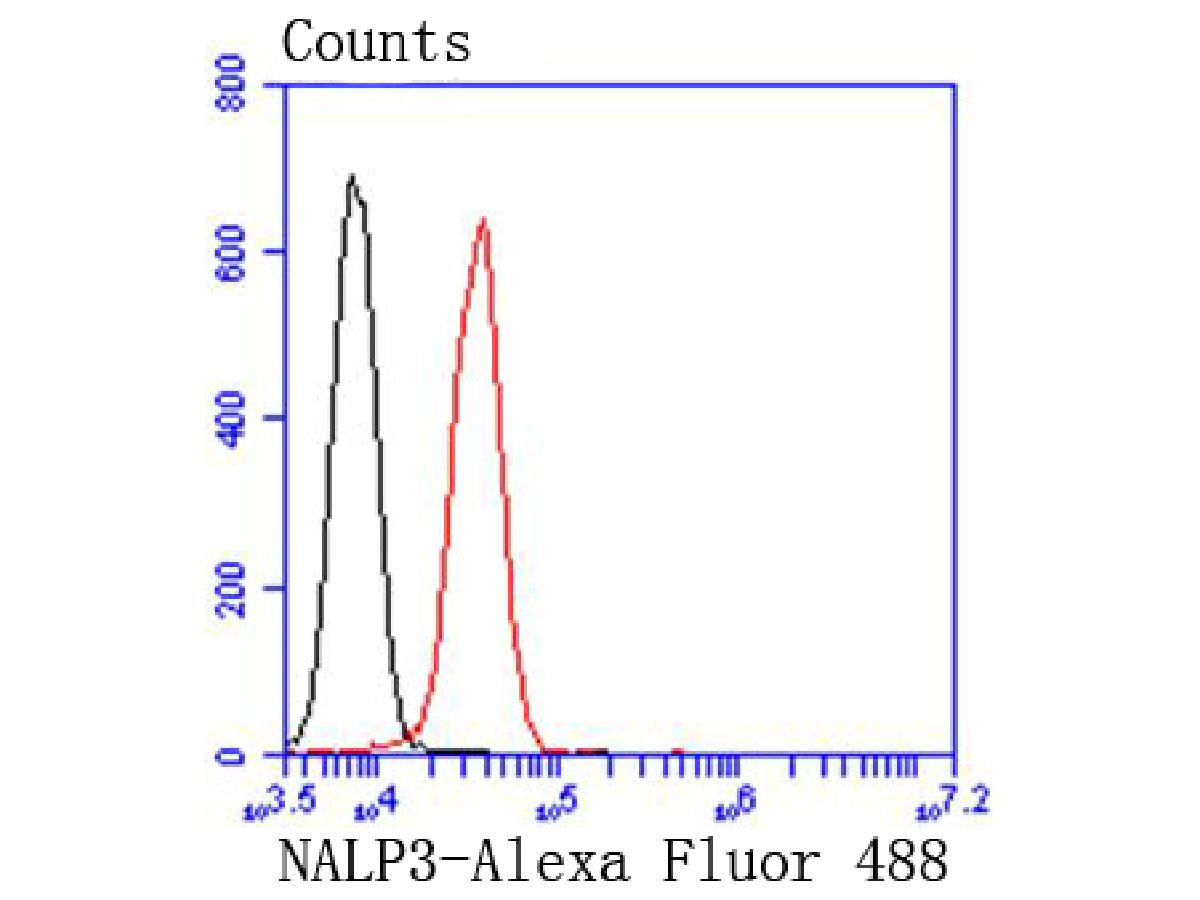 Flow cytometric analysis of NLRP3 was done on Jurkat cells. The cells were fixed, permeabilized and stained with the primary antibody (ET1610-93, 1/50) (red). After incubation of the primary antibody at room temperature for an hour, the cells were stained with a Alexa Fluor 488-conjugated Goat anti-Rabbit IgG Secondary antibody at 1/1000 dilution for 30 minutes.Unlabelled sample was used as a control (cells without incubation with primary antibody; black).